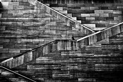 Untitled (stairs) (mia depaola) Tags: art design eos interior shotoniphone abstract geometricshapes textures architecture mono