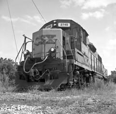 Workhorse Among The Weeds (DJ Witty) Tags: csx csxt hanoversub gp382 emd dieselelectriclocomotive rr railroad rolleicordlll kodak tmax400 bw blackwhite blackandwhite penncentral conrail mediumformatphotography photography
