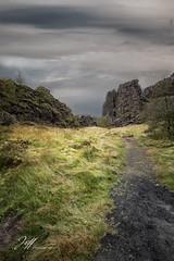 Paysage d'Islande Þingvellir (Jeff-Photo) Tags: continentsetpays europe is isl iceland islande ile islande2017 parcnationaldeþingvellir voyage þingvellir