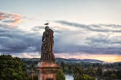 Inverness II (Passie13(Ines van Megen-Thijssen)) Tags: highlands inverness schotland schottland scotland lovescotland statue monument duif taube bird landscape canon inesvanmegen inesvanmegenthijssen evening sunset