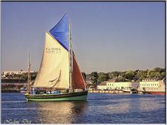 La Nébuleuse - Concarneau (Nadine.Dvx) Tags: concarneau concarneauleport bretagne bateaux france finistère voilier lanébuleuse