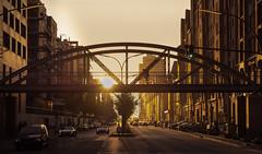 Hafencity - Golden Bridge (Michi Klotzin) Tags: brücke fahrrad geländer hafencity hamburg streetfotografie sonnigertag speicherstadt bridge sunset streetphotography architektur architecture outside goldenhour