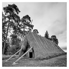 Lojsta hall _ 2 (leo.roos) Tags: cz czone geschiedenis vroeger archit wijd vierkan czza solaag sweden sverige gotland zweden darosa leoroos variotessartfe41635 sel1635z a7iii variotessar16354 sonycz16354 sonycarlzeissvariotessarfe1635mmf4zaoss swedengotlandspring2019 house noiretblanc longhouse ironage lojstahall history architecture