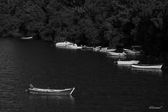 Pesues (Cantabria) (alfonso-tm) Tags: botes agua ria arboles cantabria bn fujifilmxt3