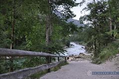 Steiermark Salza Palfau J-01020 (reinhard_srb) Tags: steiermark salza palfau fluss wasser niederöstereich rafting sport freizeit felsen tal schlucht start einstieg abgang