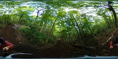 Summer forest walk 360 (Lorraine Goh) Tags: forest trees walk summer 360 green folliage montreal mont royal foret nature montain