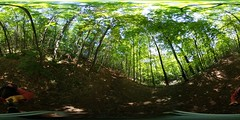 Summer forest walk 360 (Lorraine Goh) Tags: forest trees walk summer 360 green folliage montreal mont royal foret nature montain montroyal lemontroyal mtroyalmoment