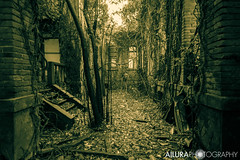 (kuronadargarth) Tags: urbex ruins hospital mental asylum abandoned derelict poveglia venice laguna island haunted ghosts paranormal supernatural blackandwhite