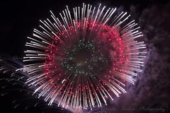 St. Catherine Feast Fireworks - Zurrieq - MALTA - 2019 (Pittur001) Tags: st catherine feast fireworks zurrieq malta 2019 charlescachiaphotography charles cachia night photography pyrotechnics pyrotechnic pyromusical cannon 60d excellent colours europe exhibition european feasts festival flicker award amazing brilliant beautiful maltese valletta