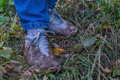 Первые шаги в грязь