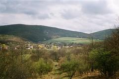 Cserhát (szmenazsófi) Tags: smenasymbol lomo smena analog analogue film 35mm outdoor nature hike hiking hills hungary magyarország cserhát kéktúra országoskéktúra túra túrázás green zöld hilly dombság tavasz spring