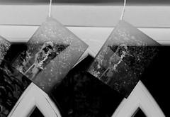 hangingouttodry (jhotopf) Tags: blancoynegro blackwhite noiretblanc 4x5 homeprocessing fomopan400 daveshrimptonworkshop hc110 massivedev