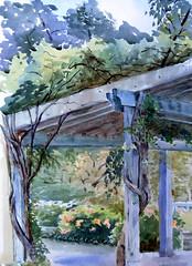 Rosetta McClain Garden, Plein Air, 2019-08-04 (light and shadow by pen) Tags: watercolor landscape toronto park garden art