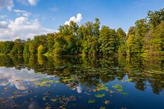 Change of Seasons (gubanov77) Tags: nature september blue seasons pond water moscow russia reflection relax shibaevskypond kuzminki park landscape