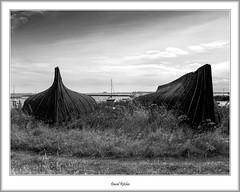 Two Upturned Hulls, Lindisfarne (flatfoot471) Tags: 2008 blackwhite england unitedkingdom holiday northumberland august lindisfarne coast beach northsea holyisland farneislands summer boats holyisle