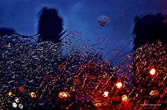 Adios, Cerati (Aprehendiz-Ana Lía) Tags: flickr cerati adios música imagen nikon lluvia noche fotomanipulación dolor azul negro color poema azulcobalto edificios arquitectura argentina luces estrella luz sky urban streephotography urbana