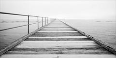 rye-3157-ps-w (pw-pix) Tags: pier railings decking wooden lights poles boards water ripples patterns sand shallow shore bay horizon fog foggy hazy cloudy overcast strange morning ships boats distance calm smooth quiet foghorn bw blackandwhite monochrome sonya7 irconvertedsonya7 850nminfrared ir infrared adaptedlens nikon142428afs nikkor1424mm128ged nikkor142428 nikon142428 ryepier rye morningtonpeninsula portphillipbay victoria australia peterwilliams pwpix wwwpwpixstudio pwpixstudio