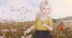 End of Summer (♥ Lucie ♥) Tags: sl second life end summer decoy half deer prtty elle boutique uber maitreya genus babyface butterflies field golden skies sky flowers sunshine
