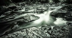 Black River, Gogebic County, MI (Northwoods Apparition) Tags: holgawpc pinhole portra160