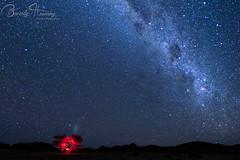 Landscape-03 (Beverly Houwing) Tags: africa namibia hoanib desert adapted skeletoncoast night sky milkyway tree lightpaint landscape darksky newmoon red glow headlamp skeletoncoastnationalpark