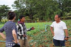 Cambodia-dawson-01 (1253) (Horticulture Innovation Lab) Tags: photobybrendadawson cambodia legrand borarin royaluniversityofagriculture ucdavis karen