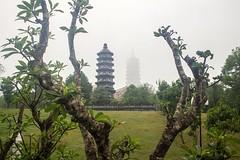 Entre ramas (rraass70) Tags: canon d700 monumentos ninbinh deltadelriorojo vietnam