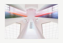 Heavenly (gerla photo-works) Tags: museum mmk modern architecture architektur art abstrakt atrium frankfurt