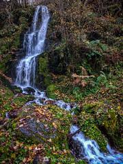 Agua del bosque (SantiMB.Photos) Tags: 2blog 2tumblr 2ig valdetoran valldaran valdaran pirineos pyrenees lleida otoño autumn motog3 móvil phone cascada waterfall geo:lat=4282483881 geo:lon=077174283 geotagged porcingles cataluna españa