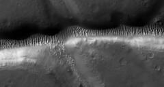 Nectaris Fossae (sjrankin) Tags: 5september2019 edited nasa mars mro marsreconnaissanceorbiter fossae nectarisfossae valley sanddunes craters grayscale esp0179911520
