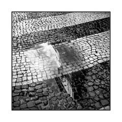 reflection • porto, portugal • 2019 (lem's) Tags: reflection reflet pavé paved street rue flaque eau maison house water porto portugal rolleiflex t