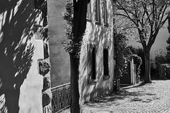 DSC10854 (s0340248) Tags: tauberbischofsheim 50mm sony ilce a6000 minolta rokkor sel deutschland bw badenwürttemberg baden bayern franken alpha beautiful beauty black brunnen c1 captureone city color creative delicious elegant eyes face figur flickr fotografie frau geographic gorgeous hdr image imagine kirchen landscape landschaft light lovely man mann nature ngc nice people photo photography picture portrait pretty schwarz sensual skulptur street stunning sweet tones top travel weis white wolken woman samyang12mm samyang 12mm blackwhite mm