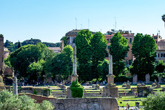 Landscape of the ruins from the Roman Forum, Rome, Italy (OLF Picture) Tags: romanforum archaeological structure famousplace architectural panoramic imperial church empire monumental cityscape archeology oldruin sky traveldestinations tourism colonnade historic antique sculpture temple art rome famous arch city roman destination building landmark ruin italy architecture europe historical monument roma old european column italian history ancient stone touristic forum culture travel landscape time
