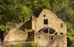 The Old Mill, Jesmond Dene (alisonhalliday) Tags: derelictbuilding mill architecture watermill newcastleupontyne jesmonddene canoneos77d canonefs18135mm trees green stone