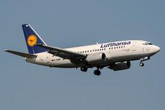 D-ABIM (PlanePixNase) Tags: frankfurt fra eddf airport aircraft planespotting lufthansa 737 737500 b735 boeing
