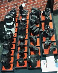 Sony cameras & lenses 247:365 (3:977) (♔ Georgie R) Tags: sony cameras lenses crawleycameraclub tilgate crawley sussex
