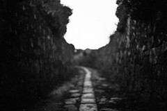 vanishing point (FMCRphotography) Tags: contest blackandwhite bestshotoftheday analogue analoguecamera portugal landscape streetphotography street hally 35mm hp5 road