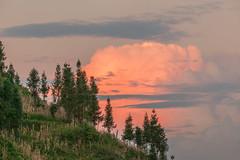 _MG_3443.0909.Lửu Thần.Bắc Hà.Lào Cai. (hoanglongphoto) Tags: asia asian vietnam northvietnam northernvietnam northeastvietnam landscape scenery nature vietnamlandscape vietnamscenery sunrise sky cloud theforest forest flankshill hillside hillandtrees canon canoneos5dmarkii canonef70200mmf28lisusm đôngbắc làocai bắchà lửthần phongcảnh thiênnhiên bìnhminh bầutrời mây đồicây rừng phongcảnhbắchà câythông pine