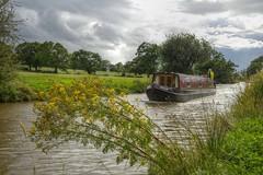 PassingBy (Tony Tooth) Tags: nikon d600 tamron 2470mm narrowboat boat canal hdr macclesfieldcanal astbury cheshire england