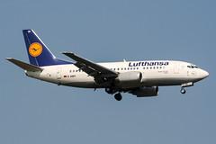 D-ABIY (PlanePixNase) Tags: frankfurt fra eddf airport aircraft planespotting lufthansa 737 737500 b735 boeing