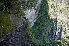 Delicious thrill of vertigo (Chemose) Tags: sony ilce7m2 alpha7ii mai may pérou peru machupicchu montagne andes mountain inca sentier trail bridge pont path