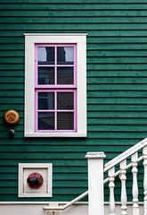 Pink Trimmed Window (Karen_Chappell) Tags: pink white green house building window nfld city urban downtown railing steps wood wooden paint trim painted newfoundland stjohns architecture canada canonef24105mmf4lisusm avalonpeninsula atlanticcanada sprinkler clapboard lspuhall jellybeanrow reflections color colour