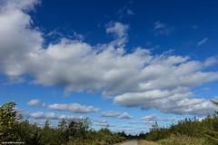 September Day (gabi-h) Tags: clouds road trees sky blue white pointpetre gabih landscape princeedwardcounty september