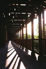 Sunny afternoon. (蒼白的路易斯) Tags: 台灣 宜蘭 羅東林業文化園區 kodakcolorplus200 yashicaelectro35gsn 底片攝影 底片