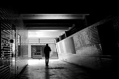 Between the shiny walls (pascalcolin1) Tags: paris13 homme man mur wall brillant shiny lumière light ombre shade reflets reflection photoderue streetview urbanarte noiretblanc blackandwhite photopascalcolin