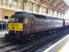 47802 - Victoria Station - 05-09-19 (techno-phobe) Tags: train locomotive diesellocomotive london londonvictoria victoriastation class47 duff 47802 westcoastrailways wcr wcrc 5z82 thedorsetcoastexpress railtour
