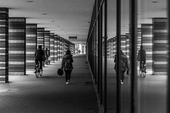life interrupted / so many things to see, so little time (Özgür Gürgey) Tags: 2019 24120mm bw d750 hamburg kolonnade nikon stpauli architecture lines patterns people reflection street symmetry