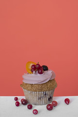 sweet cupcake with fruits and berries on a coral background (YaroslavLtn1) Tags: background white beige hands shot cupcake berries fruit muffin cream sweetness diet calories baking plate saucer cranberry orange raisin currant red purple sugar cookies tasty food eat gift peach coral cake dessert fresh homemade sweet table baked berry birthday confectionery frosting ipped buttercream candied candiedfruit