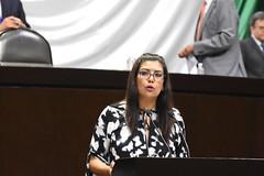 Carmen Julia Prudencio (DipCiudadanoMx) Tags: carmen julia prudencio movimiento ciudadano diputadosciudadanos
