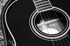 Strings  2019/ 82:365 (uselessbay) Tags: 2019 billtalley eastside nikon nikond700 providence rhodeisland uselessbayphotography williamtalley d700 digital fullframe guitar stilllife uselessbay unitedstates