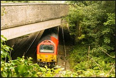 Mind the Gap! (peterdouglas1) Tags: dbcargo class67 67010 talybont northwalescoastrailway bridges